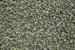 Des tonnes de grains de café à l'usine Van Houtte